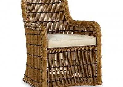 506-79-rafter-celerie-dining-chair