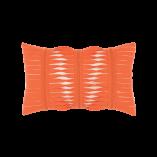 gladiator-coral
